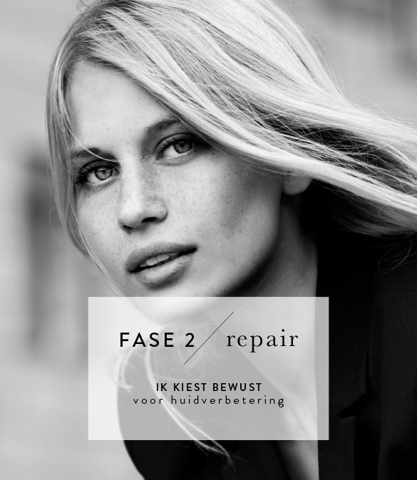 Fase 2: Repair